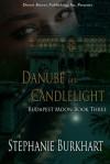 Danube in Candlelight - Stephanie Burkhart