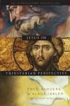 Jesus in Trinitarian Perspective - Fred Sanders, Klaus Issler, Scott Horrell, Donald Fairbairn, Garrett DeWeese, Bruce Ware