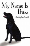 My Name Is Buzz - Christopher Small