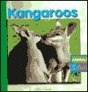 Kangaroos - E. Melanie Lever, Pat Slater, Kate Lovett