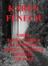 Three Deadly Short Stories of Suspense: Deadly Thoughts/Secrets/The Plan - Karen Fenech