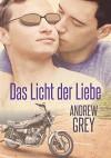 Das Licht der Liebe (Herzenssachen 1) - Florentina Hellmas, Andrew Grey