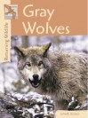 Gray Wolves (Returning Wildlife) - John E. Becker