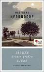 Bilder deiner großen Liebe: Ein unvollendeter Roman - Wolfgang Herrndorf