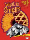 What Is Smell? (Lightning Bolt Books) - Jennifer Boothroyd