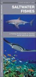 Saltwater Fishes: A Folding Pocket Guide to Familiar North American Species - James Kavanagh, Raymond Leung