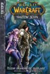 The Dragons of Outland - Richard A. Knaak, Kim Jae-Hwan