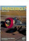 Thunderbolt: Republic P-47 - Paul Perkins, Dan Patterson