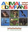 Animal Olympians: The Fastest, Strongest, Toughest, and Other Wildlife Champions - Thane Maynard