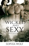ROMANCE: Wicked and Sexy (Contemporary Women's Fiction, Historical Romance, Short Stories,) - Sophia Wolf