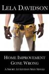 Home Improvement Gone Wrong (Short Attention Span Singles) - Lela Davidson