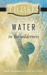 Water in the Wilderness: God's Provision for Our Every Need - T.D. Jakes
