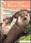 River Otters (Returning Wildlife) - John E. Becker