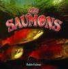 Les Saumons - Bobbie Kalman, Rebecca Sjonger, Marie-Josee Briere