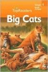 Big Cats - Denise Ryan
