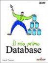 Il mio primo Database - John V. Petersen