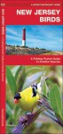 New Jersey Birds: An Introduction to Familiar Species - James Kavanagh