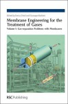 Membrane Engineering for the Treatment of Gases - Royal Society of Chemistry, Giuseppe Barbieri, Laurie Peter, Pluton Pullumbi, Eric Favre, Donald R. Paul, Brandon Rowe, Arnaud Baudot, Sophie Jullian, Michael Peter Follman, Royal Society of Chemistry