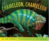 Chameleon Chameleon - Joy Cowley, Nic Bishop