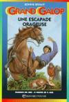 Une escapade orageuse (Grand Galop, #27) - Bonnie Bryant, Elizabeth Lear