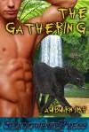 The Gathering - Auburnimp