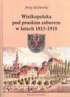 Wielkopolska pod zaborem pruskim w latach 1815-1918 - Jerzy Kozłowski
