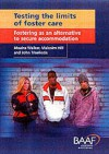 Testing the Limits of Foster Care - Moira Walker, John Triseliotis, Malcolm Hill