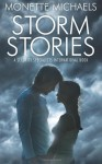 Storm Stories: A Security Specialists International Book - Monette Michaels