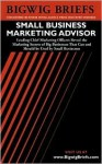 Small Business Internet Advisor: Industry Experts Reveal the Secrets to Internet Marketing, Bizdev, Legal Issues, Ecommerce and Other Important Topics Facing E Very Small Business Doing Business on the Internet - Aspatore Books, Bigwig Briefs Staff, BigwigBriefs.com