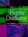 Workbook for Neighbors/Tannehill-Jones' Human Diseases, 3rd - Marianne Neighbors, Ruth Tannehill-Jones