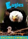 Eagles - Heather C. Hudak