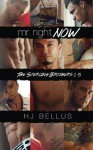 Mr. Right Now, Vol. 1-5 - HJ Bellus