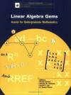 Linear Algebra Gems: Assets for Undergraduate Mathematics - David Carlson