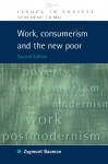 Work, Consumerism and the New Poor (Issues in Society) - Zygmunt Bauman