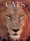 Cats of Africa: Behavior, Ecology, and Conservation - Luke Hunter, Gerald Hinde