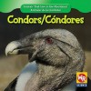 Condors/Condores - JoAnn Early Macken