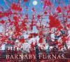 Barnaby Furnas - Barnaby Furnas, Shamim M. Momin, Carroll Dunham