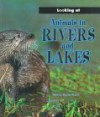 Animals in Rivers and Lakes - Moira Butterfield