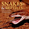 Snakes & Other Reptiles: Includes America's Deadliest Snakes - Deborah M. Alexander