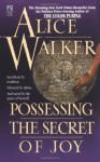 Possessing the Secret of Joy (Mass Market) - Alice Walker