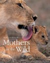 Mothers in the Wild - Anup Shah, Manoj Shah