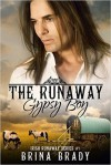 The Runaway Gypsy Boy - Brina Brady