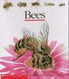 Bees - Gallimard Jeunesse