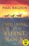 Stallions at Burnt Rock - Paul Bagdon