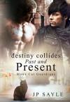 Destiny Collides Past and Present (The Manx Cat Guardians #2) - JP Sayle