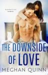 The Downside of Love - Meghan Quinn
