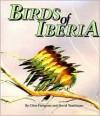 BIRDS OF IBERIA: yyy - Clive Finlayson, David Tomlinson, Dave Tomlinson