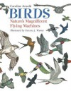 Birds: Nature's Magnificent Flying Machines - Caroline Arnold