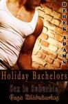 Holiday Bachelors - Derek Adams