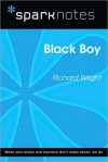 Black Boy (SparkNotes Literature Guide Series) - SparkNotes Editors, Richard Wright